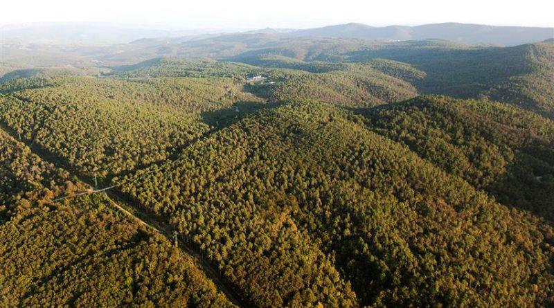 """Siena: """"Comunità naturali: tesori di biodiversità"""", se ne parla all'Accademia dei Fisiocritici il 15 novembre"""