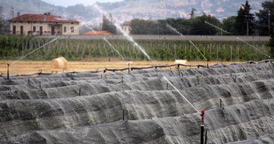 Siccità: il Consorzio di Bonifica Alto Valdarno ha anticipato l'apertura della stagione irrigua