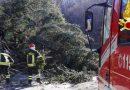Toscana: vento forte, codice giallo prolungato per tutta la giornata di domani lunedì 20 gennaio